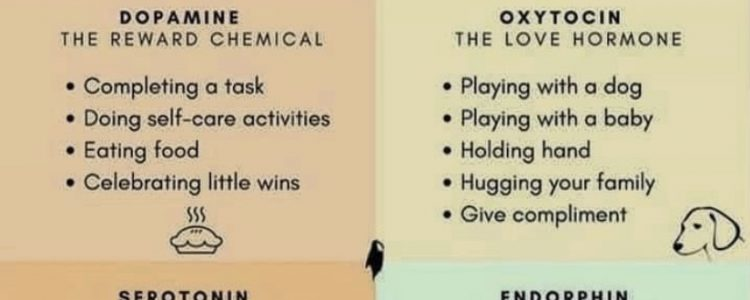 Chemicals that Change your Moods