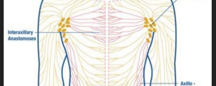 Pre Surgical Lymphatic Drainage Importance.
